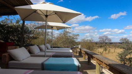 area-do-baobab-ridge-como-foi-fazer-um-safari-na-africa-do-sul