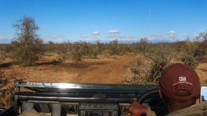 ranger-baobab-ridge